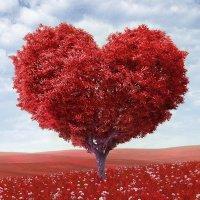 Love-Yourself-Tree